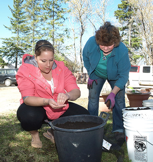 Northern Ontario News - The Temiskaming Speaker - Healthy Living on a Budget