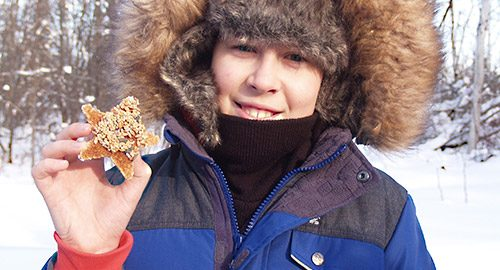 The Temiskaming Speaker - News - Bright idea for bird-feeders